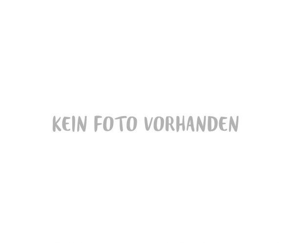 101090 Dichtung Kupplungsgehäuse SPRiNTUS